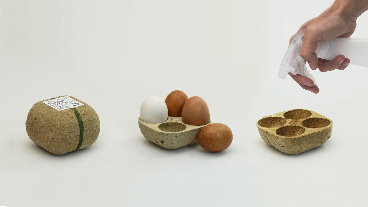 Biopack, una confezione che si trasforma in... piante!
