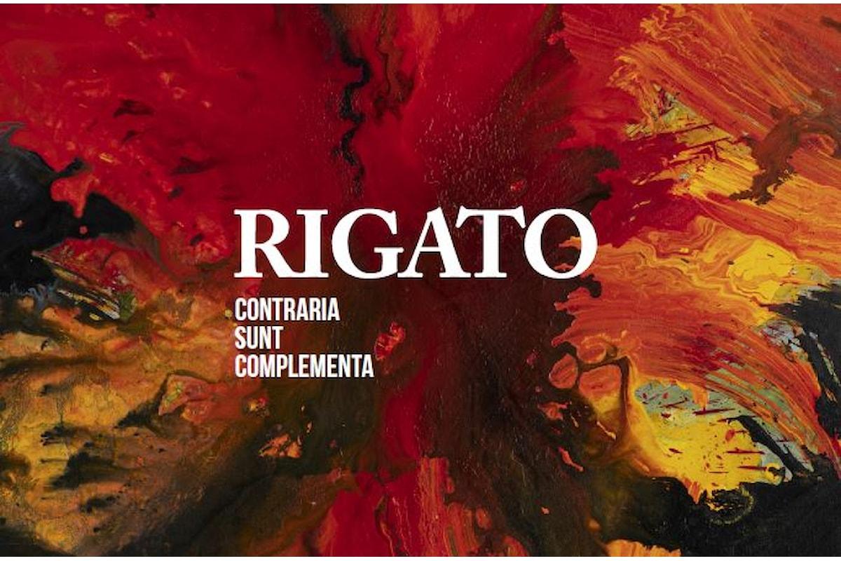 Rigato / Contraria sunt complementa. Da settembre due personali a Vicenza.