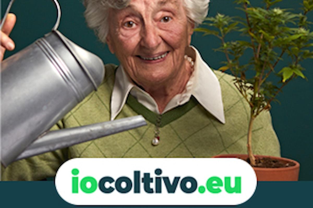#IoColtivo, al via la campagna di disobbedienza civile pro cannabis