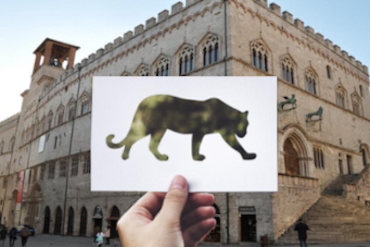 Dove sta andando la politica di Perugia?