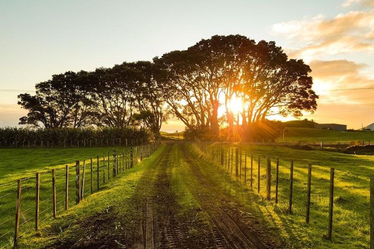 Agricoltura sociale e welfare rurale è la nuova proposta del GAL Madonie per lo sviluppo del territorio