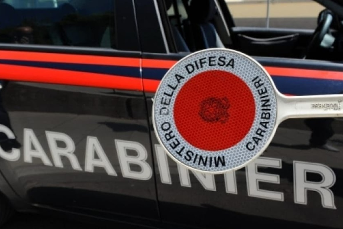 Rubò legname a Sanza (Sa), arrestato 42enne dai carabinieri