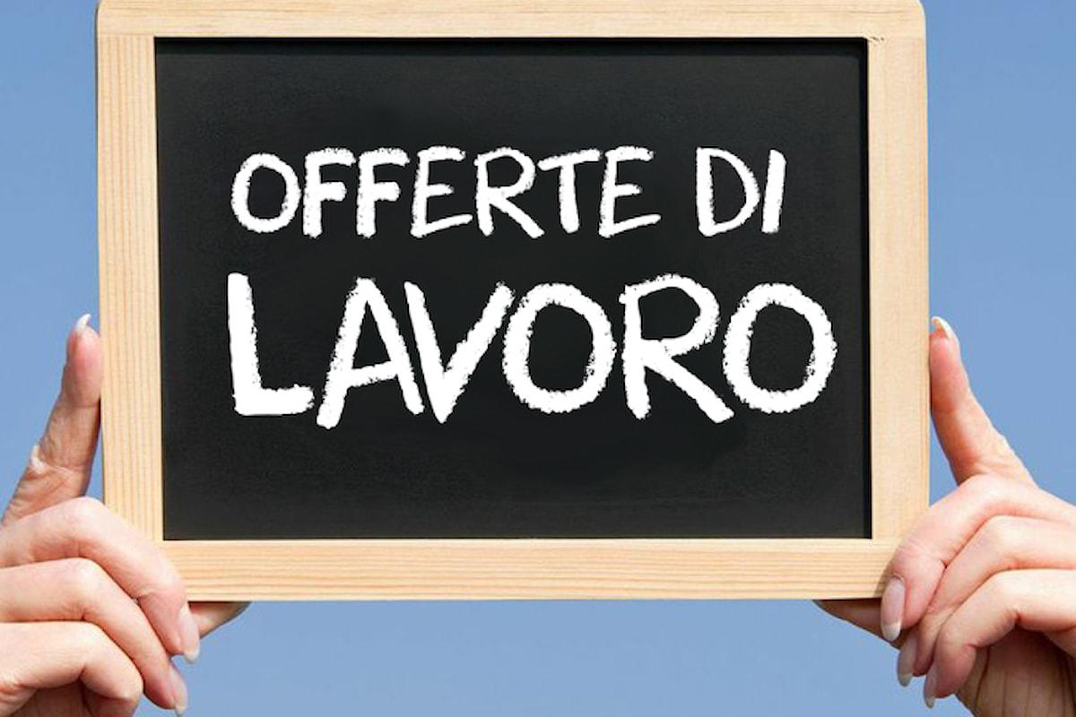 Lavoro, ecco la lista delle figure più richieste in Italia