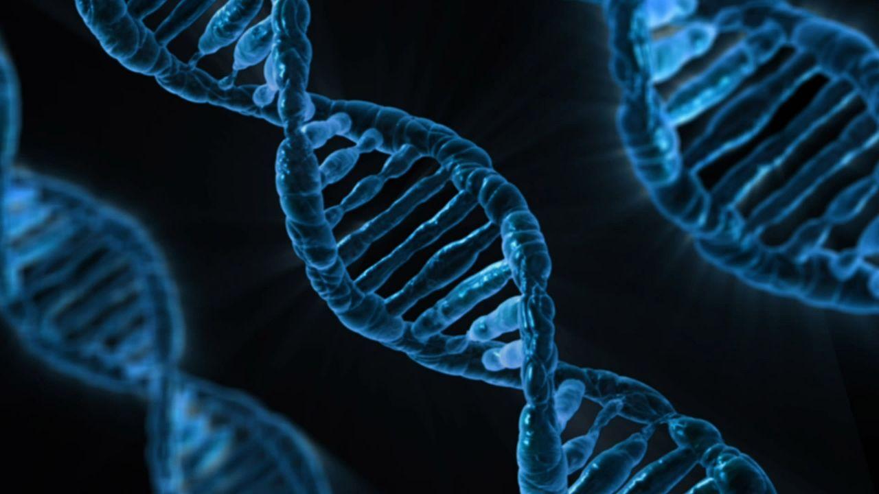 Malattia di Alzheimer: può essere ereditaria?