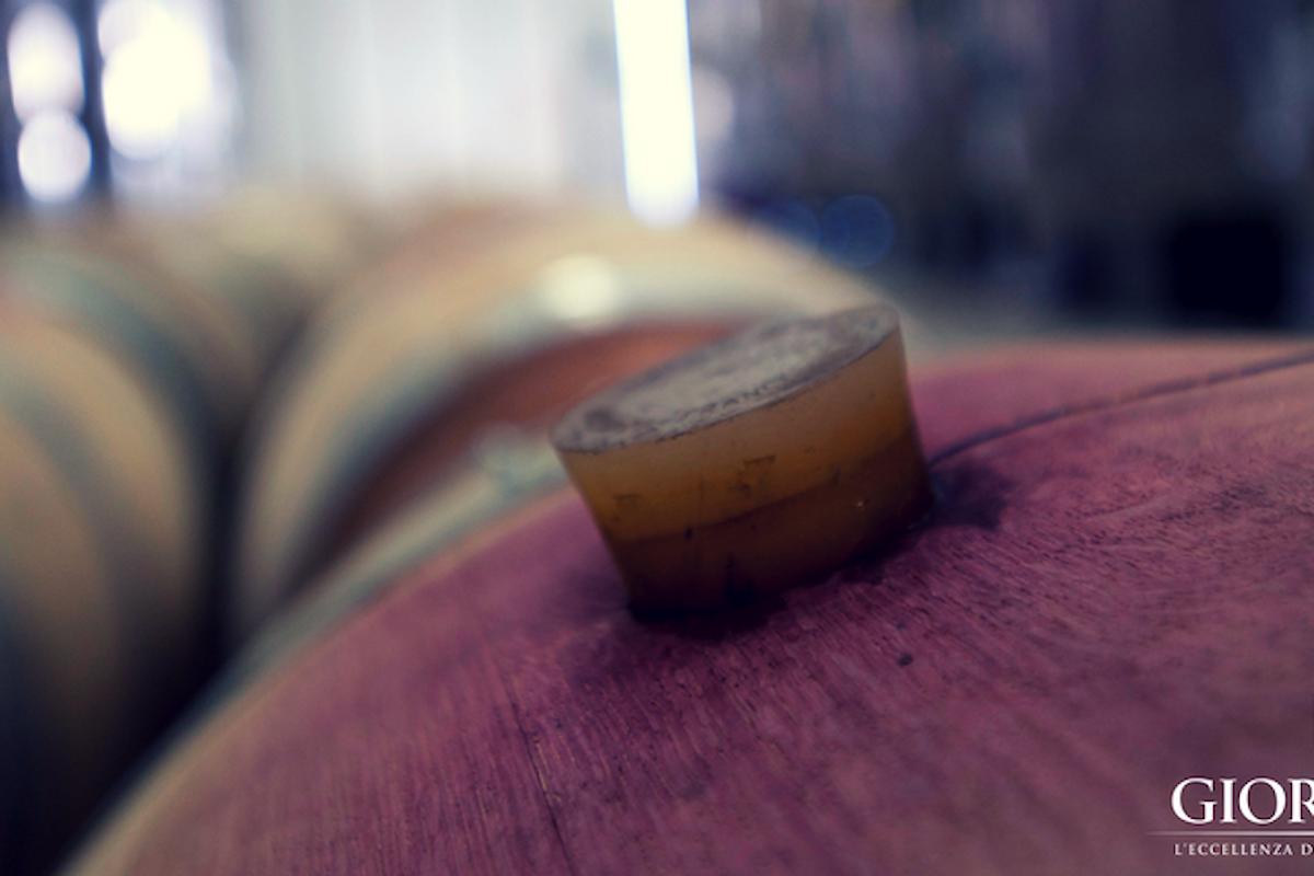 Il vino visto da chi lo ama davvero: il cantiniere, uno tra i più importanti mestieri del vino