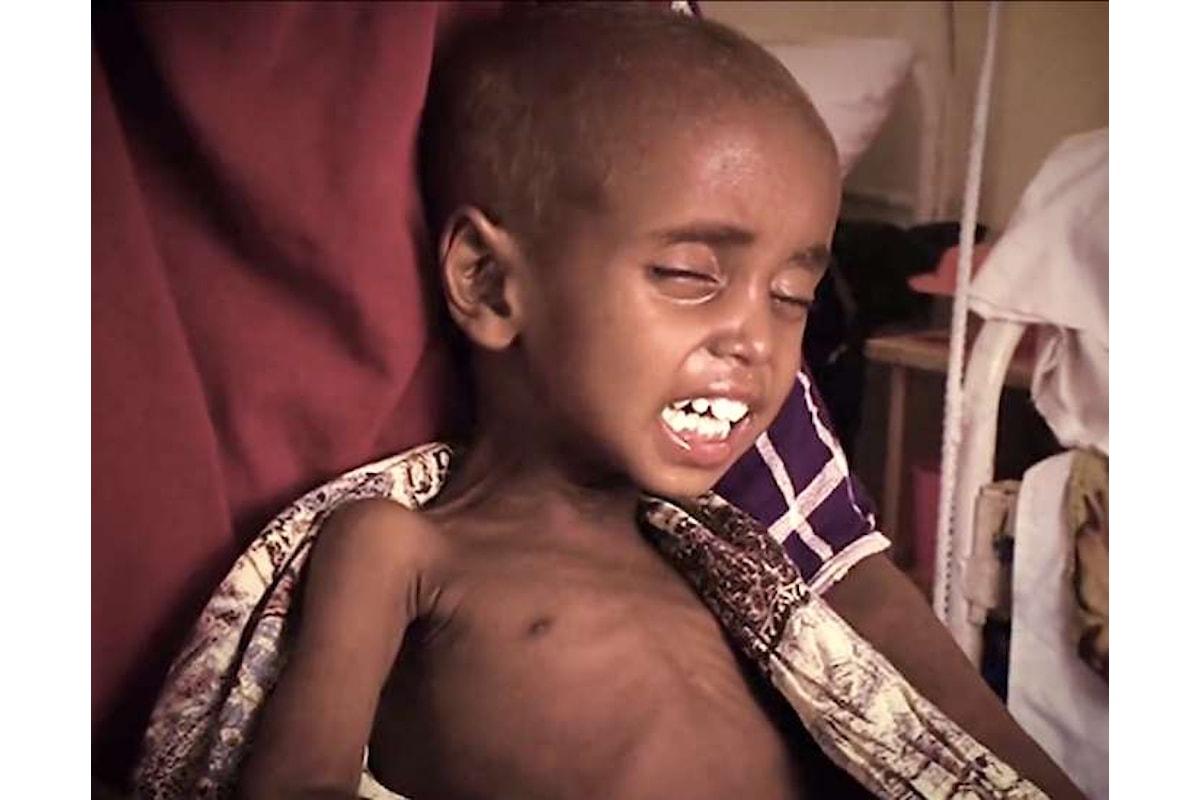 Unicef, oltre 180 milioni le persone che non hanno accesso all'acqua potabile a causa della guerra