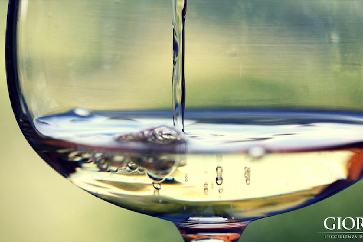 Alla scoperta dei mestieri del vino: l'enologo, custode dei segreti di cantina